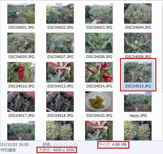 Multisize Resizer 画像を複数サイズに一括リサイズ