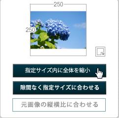 リサイズされる画像のパターンを指定1