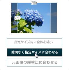 リサイズされる画像のパターンを指定2