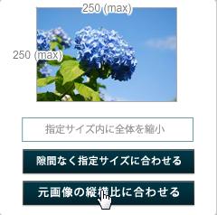 リサイズされる画像のパターンを指定3