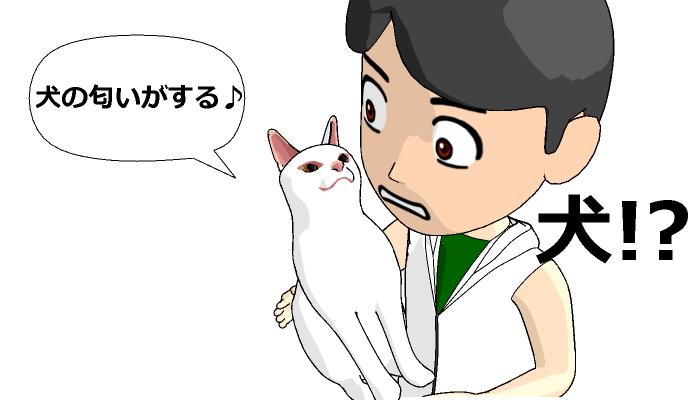 抱きあげた猫に「犬のにおいがする」と言われる夢を診断してみた