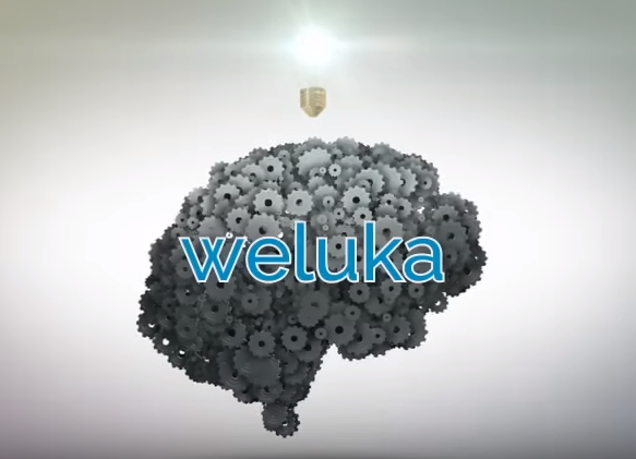 Weluka 直感的にWPを操作する初心者向けシステムテーマ