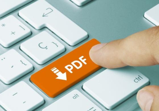 pdf 漏えい