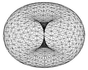 トーラス 構造