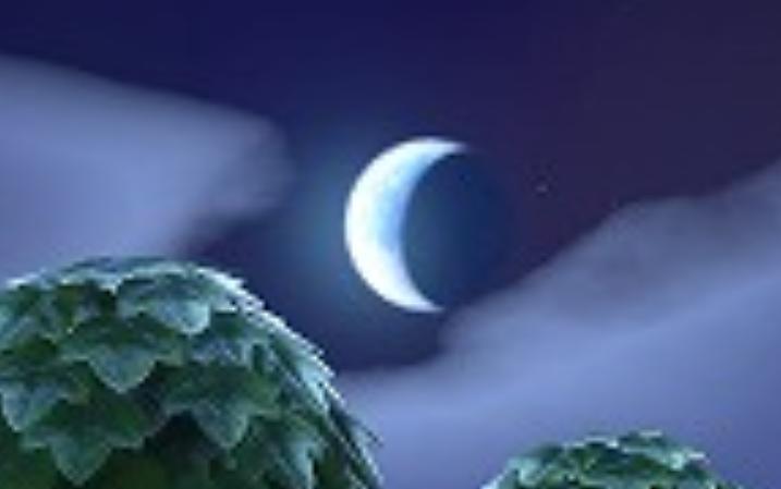 月ではない星