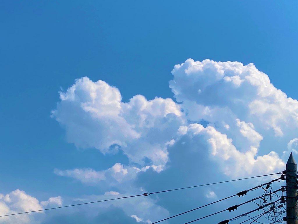 龍雲 ヨッシー 羽犬