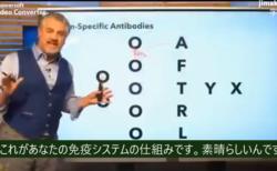 自然抗体 ワクチンの特異抗体の仕組み